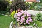 Gärten unserer Kunden